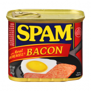 Spam Luncheon Meat With Bacon 340g