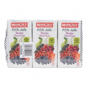 100% Juice Berries Mixed Fruits 6sX200ml