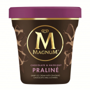 Ice Cream Pint - Chocolate & Hazelnut Praline 440ml